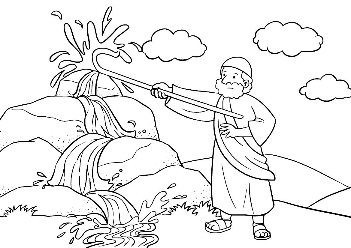 Mose und Wasser
